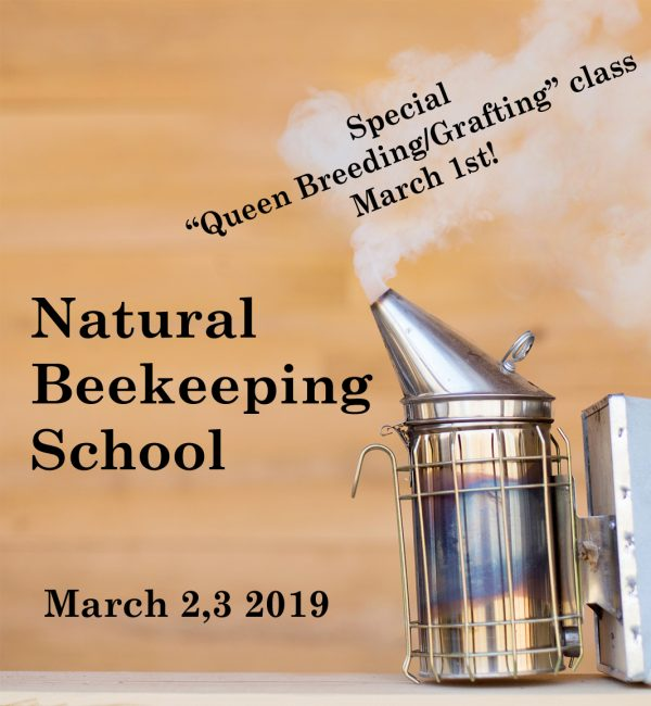 Beekeeping School